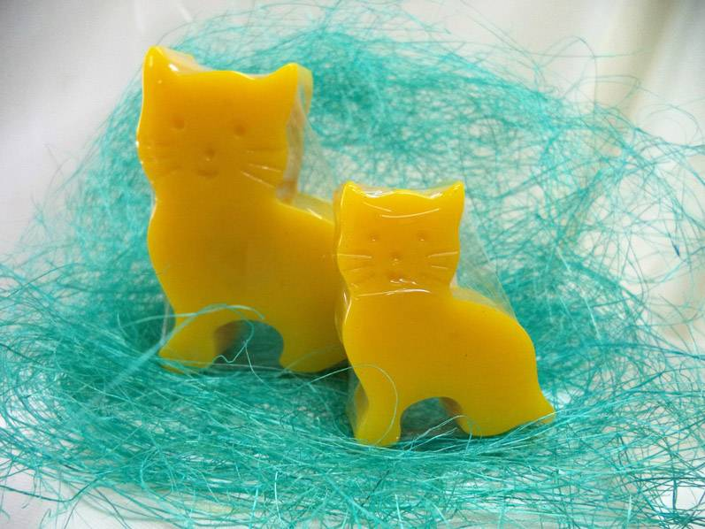 pareja-gatos-275